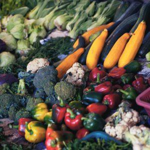 Fresh Fruit & Produce